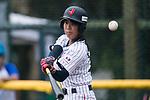 #37 Sugimoto Mina of Japan bats during the BFA Women's Baseball Asian Cup match between Japan and Hong Kong at Sai Tso Wan Recreation Ground on September 5, 2017 in Hong Kong. Photo by Marcio Rodrigo Machado / Power Sport Images