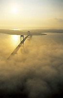 The late afternoon sun illuminates the Newport Bridge as it emerges from the fog