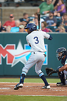 Osmy Gregorio (3) of the Princeton Rays at bat against the Pulaski Yankees at Calfee Park on July 14, 2018 in Pulaski, Virginia. The Rays defeated the Yankees 13-1.  (Brian Westerholt/Four Seam Images)