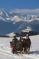 Europe/Autriche/Tyrol/Axams: Promenade en traineau avec Mr Ehrensperger- Tourisme équestre