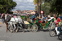 Marrakesh, Morocco.  Tourist Family in Horse-drawn Carriage.