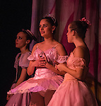 2013 BTM Nutcracker Dress Rehearsal Second Act