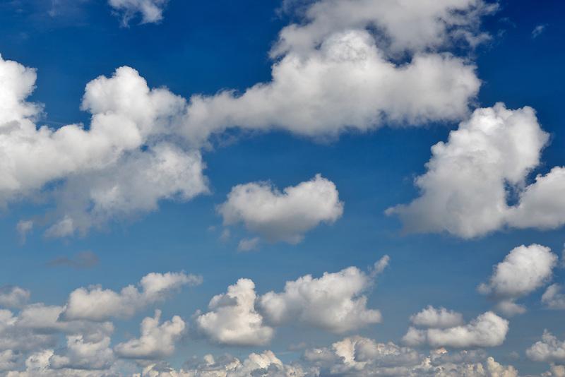 Cumulous clouds over Sokol Blossor Vineyards. Oregon