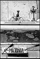A Sant'Arcangelo di Romagna, (Rimini), è sorta neglii anni '90 la comunità dei Mutoidi. <br /> Mutonia è la loro città, le case sono  corriere dismesse, carri, camper.<br /> Circa 30 persone che vivono costruendo robot, sculture mobili, arredamenti punk, creature mostrose.