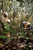 Maraca Island, Roraima, Brazil. Scientists from RBG Kew and INPA recording data in the field.