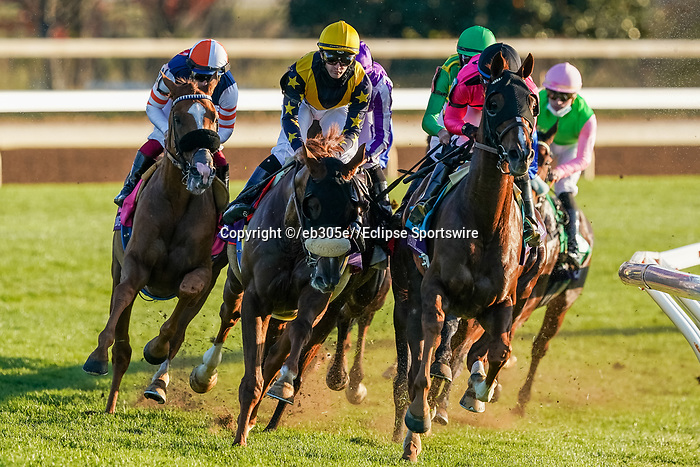 November 7, 2020 : Tarnawa, ridden by Colin Keane, wins the Longines Turf on Breeders' Cup Championship Saturday at Keeneland Race Course in Lexington, Kentucky on November 7, 2020. /Dan Heary//Breeders' Cup/Eclipse Sportswire/CSM
