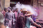 Boys throw gulal at rider on a street in Vrindavan on the occassion of Holi Festival. Holi - The  Hindu festival of colour is celibrated for a week in the Brraj region of Uttar Pradesh, India.