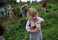 Jennifer Byrne collects caterpillers as neighbors help clear the Guggenheim School Preserve of ragweed and other invasives and are trying to organize an coordinated effort with the school to keep native plants thriving in the meadow. PW Green (Port Washington green) a non-profit corporation focused on the preservation of wild and natural places and using them for environmental education