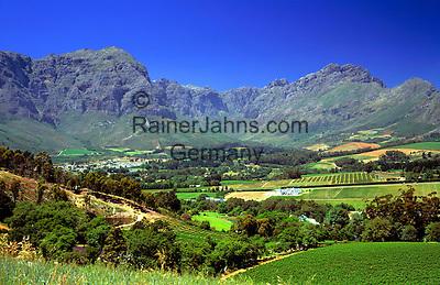 South Africa, near Cape Town, Winelands Stellenbosch: wine growing estate Thelema