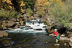 Fly fishing on the North Fork of the Middle Fork of the Willamette River; Willamette National Forest, Cascade Mountains, Oregon..#0510295