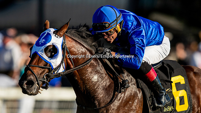 SEPTEMBER 06 2021: Pixilate with Joel Rosario wins the Winstar Mint Million at Kentucky Downs in Franklin, Kentucky on September 06, 2021. Evers/Eclipse Sportswire/CSM