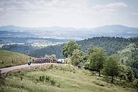 peloton climbing up the Mur d'Aurec-sur-Loire (3.2km at 10.8%)<br /> <br /> Stage 9: Saint-Étienne to Brioude(170km)<br /> 106th Tour de France 2019 (2.UWT)<br /> <br /> ©kramon
