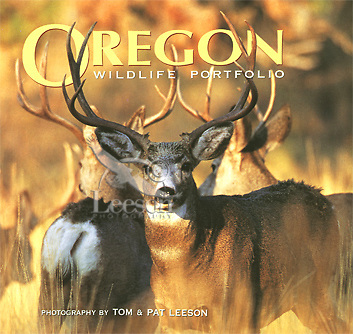 Editorial-Oregon-Wildlife-Portfolio-Photography-by-Tom-and-Pat-Leeson