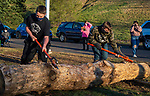 BEACON FALLS, CT-112020JS10—Brian O'Connell and Josh D'Archangelo, both members of the Woodland Timber Team compete in the log roll competition during the Battle Royal Friday at Woodland Regional High School.<br />  Jim Shannon Republican-American