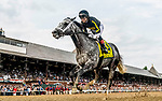 August 07, 2021: Knicks Go #4, ridden by jockey Joel Rosario wins the $1 million Whitney Stakes (Grade 1) at Saratoga Race Course in Saratoga Springs, N.Y. on August 7, 2021. Rob Simmons/Eclipse Sportswire/CSM
