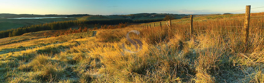 Harelaw Dam from Neilston Pad at dawn, Neilston, East Renfrewshire<br /> <br /> Copyright www.scottishhorizons.co.uk/Keith Fergus 2011 All Rights Reserved