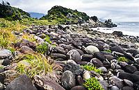 Beautiful rocks at Martins Bay on Hollyford Track - Fiordland NP, Southland, New Zealand