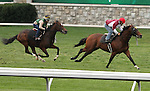 Almost an Angel and Great Attack work at Keeneland for trainer Wesley Ward.  Almost an Angel is pre entered in the Breeders Cup Juvenile Turf, while Great Attack is pre entered in the Breeders Cup Turf Sprint.  October 26, 2012.
