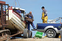 Unloading a fishing boat at  Weybourne, Norfolk.
