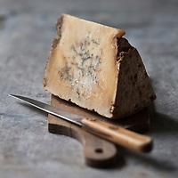 Europe/France/Rhône-Alpes/73/Savoie/Termignon: Le Bleu de Termignon, fromage de lait de vache cru à pâte persillée fabriqué en été dans les alpages fleuris, à 2000m d'altitude, dans le Parc de la Vanoise, On le connait alors sous les appellations: mauriennais, persillé du Mont-Cenis ou  bleu de Bessans.<br />  il ne reste que 4 producteurs seulement, qui produisent encore ces quelques précieuses centaines de pièces. Le troupeau de vaches ne dépasse pas les 60 têtes.<br />  - Stylisme : Valérie LHOMME