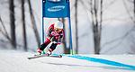 PyeongChang 2018 Alpine