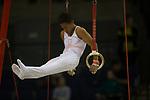 British Gymnastics Championships 2017<br /> The Liverpool Echo Arena<br /> Emil Barber Swansea Gymnastics Club<br /> 25.03.17<br /> ©Steve Pope - Sportingwales