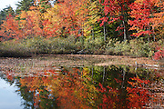 Chocorua Lake in Tamworth, New Hampshire USA during the autumn months.