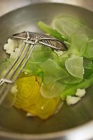 Europe/France/Bretagne/29/Finistère/Plomodiern: Légumes crus-cuits rectte d' Olivier Bellin de l'Auberge des Glazicks