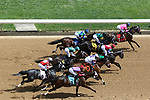 HOT SPRINGS, AR - April 15: The field runs down the stretch for the first time in the third race at Oaklawn Park on April 15, 2017 in Hot Springs, AR. (Photo by Ciara Bowen/Eclipse Sportswire/Getty Images)