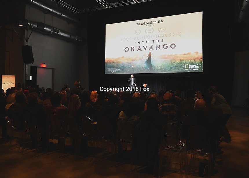 """HOLLYWOOD, CA - DECEMBER 4:  Director Neil Gelinas at National Geographic's """"Into the Okavango"""" Premiere & Reception at at NeueHouse on December 4, 2018 in Hollywood, California. (Photo by Frank Micelotta/NatGeo/PictureGroup)"""