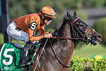 #5  Mrs. Sippy wins the Gens Falls S. (gr 2) ridden by Joel Rosario, trained H Motion. Aug 31,2109: during racing at Saratoga Race Course in Saratoga Springs, New York. Robert Simmons/Eclipse Sportswire/CSM