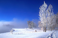 landscape of fresh snow scene with lake, trees, pathway, blue skies; serenity; winter chill, landscape. Colorado, Terry Lake.