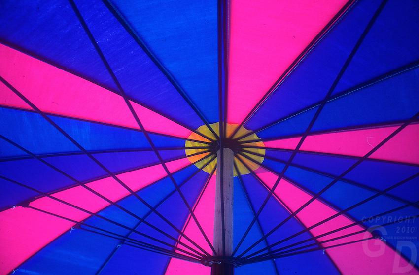 Graphic and Colorful Umbrella