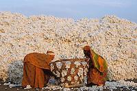 INDIA, Madhya Pradesh, Khargoan, Maikaal organic cotton project, ginning factory, cotton storage place, worker carry cotton in baskets to the ginning machines / INDIEN, Khargoan, Baumwolle Entkernungsfabrik, Verarbeitung von Biobaumwolle aus dem Maikaal Projekt