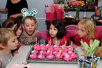 20131201_Ava's 5th BDay Fairy Princess Party