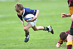 Junior Rugby, 18 May