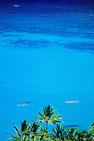 Peering over the top fronds of stately coconut palms, two single kayaks glide in single file on a serene and calm blue ocean. The deeper blue shadows of coral reefs lay in the distance.
