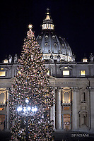 Christmas tree in St. Peter square at the Vatican.December 13, 2016.