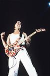 Various live photographs of the rock band, Van Halen