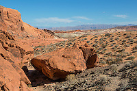 Valley of Fire, Nevada.  Trail to The Fire Wave.