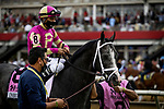 MAY 15, 2021:  Unbridled Honor before the Preakness Stakes at Pimlico Racecourse in Baltimore, Maryland on May 15, 2021. EversEclipse Sportswire/CSM
