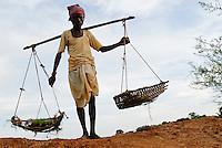 INDIA Jharkhand, Adivasi village Sarwan, farmer carry rice plants in baskets for replanting in paddy field / INDIA Jharkand , Adivasi Dorf Sarwan, Bauer mit Trage auf Schulter, in den Koerben sind Reissetzlinge zum Umpflanzen in ein Reisfeld