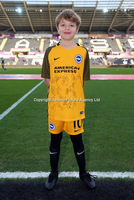 Child mascot during the Premier League match between Swansea City and Brighton and Hove Albion at The Liberty Stadium, Swansea, Wales, UK. Saturday 04 November 2017