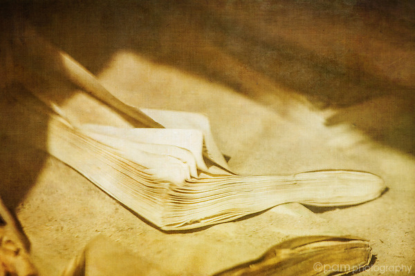 Textured image of pages in old school book at Bodie, CA