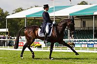 AUS-Sam Griffiths (HAPPY TIMES) 2012 GBR-Land Rover Burghley International Horse Trial: FRIDAY DRESSAGE - INTERIM-(49.00)
