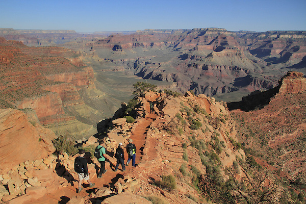 A group of young adults hiking down the South Kaibab Trail to Cedar Ridge, Grand Canyon National Park, northern Arizona, USA .  John leads hiking and photo tours throughout Colorado. . John offers private photo tours in Grand Canyon National Park and throughout Arizona, Utah and Colorado. Year-round.