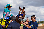 MAR 07: Authentic with Drayden Van Dyke after winning the San Felipe Stakes at Santa Anita Park in Arcadia, California on March 7, 2020. Evers/Eclipse Sportswire/CSM