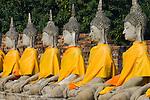Thailand, Phra Nakhon Si Ayutthaya: Ayutthaya Historical Park, line of stone Buddhas | Thailand, Phra Nakhon Si Ayutthaya: Geschichtspark Ayutthaya, Reihe sitzender Stein-Buddhas