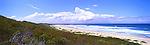 Pelican Beach, NSW