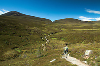Looking to  Creag a' Chalamain and the Chalamain Gap, Glenmore National Nature Reserve, Cairngorm National Park, Badenoch & Speyside